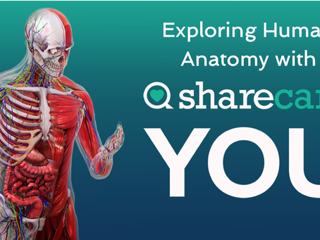 Exploring Human Anatomy with YOU