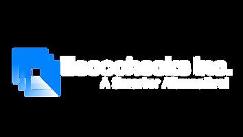 Escochecks white logo.png