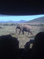 Zuid-Afrika 076.jpg