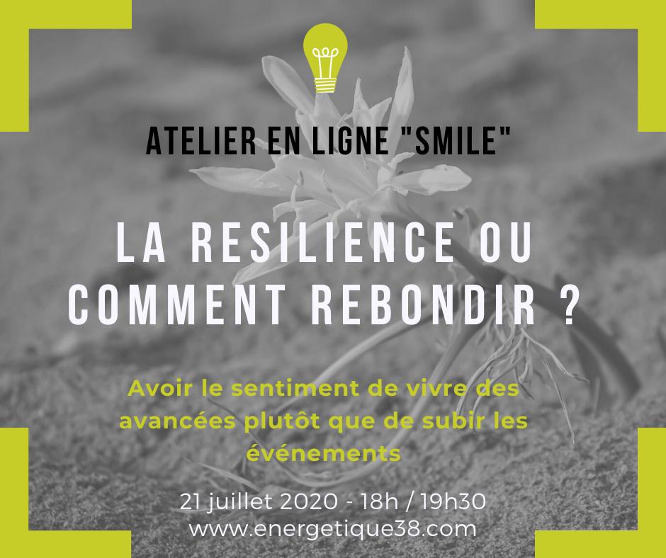 Résilience ; Atelier en ligne ; Energétique 38 ; Carine André ; Psychologie positive