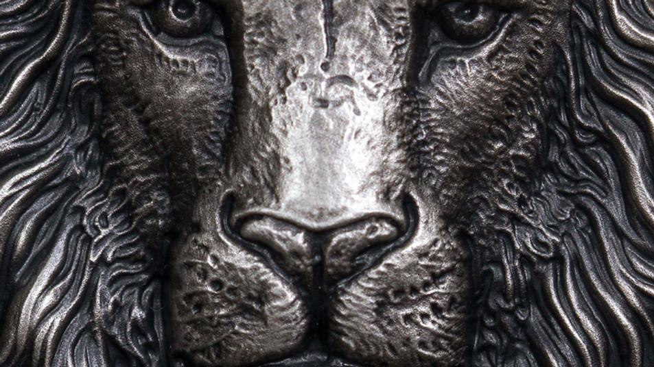 Intouch car insurance. A lion