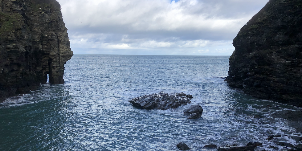 Bossiney Cove 2021