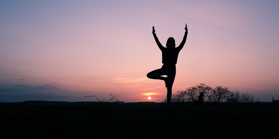 Wild at Heart Yoga Hub 2020 Yoga Safari Retreat