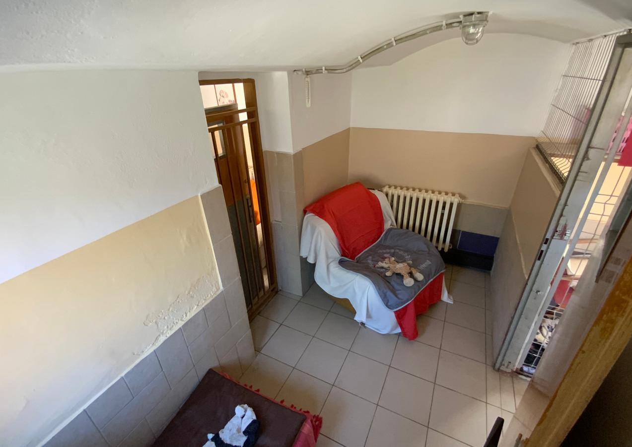 č.2 každá místnost je vybavena starým gaučem a ležením s matrací, aby měli pejsci pohodlí