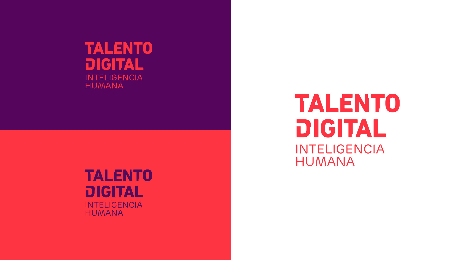 TALENTO DIGITAL.001.jpeg
