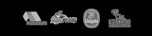 segmento-logos-02-3.png