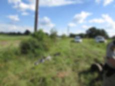 MJD crime scene 2.jpg