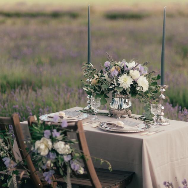 lavender17.jpg