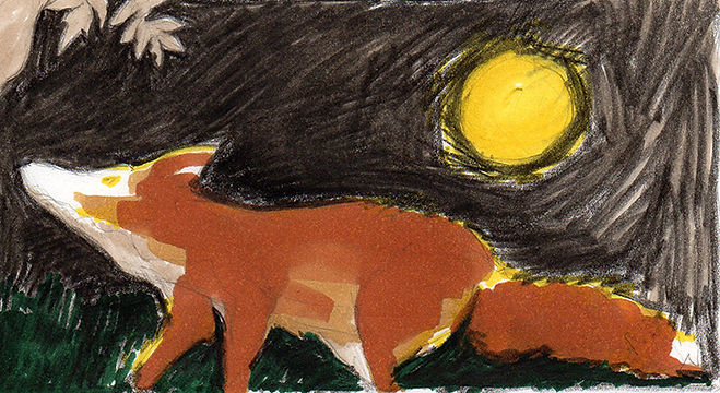 Ilustration animal
