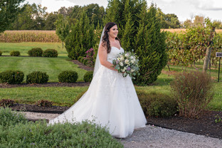 Cincinnati best most affordable wedding photographer Tammy Bryan highlight picture from Brooke & Duston wedding – 15
