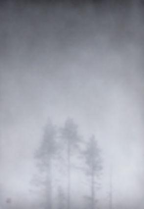 7. Usva  霞  kasumi [60×40 cm]のコピー.JPG