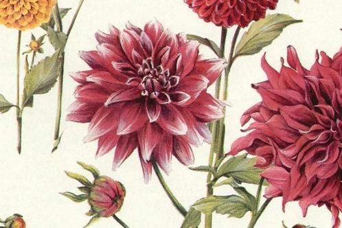 Carta Fiori Rossi Sfondo Bianco 50x70cm (cod. 6150)
