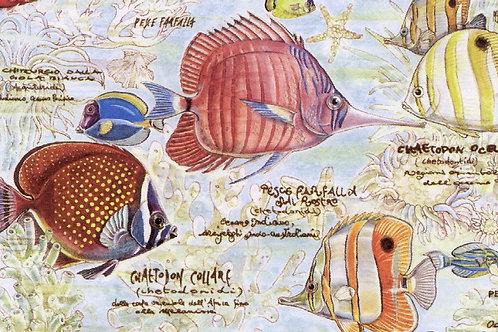 Carta con Pesci  50x70cm (cod. 1313)