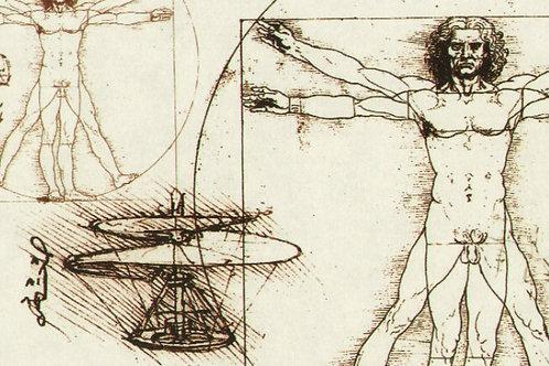 Carta con Uomo Vitruviano 50x70cm (cod.5850)