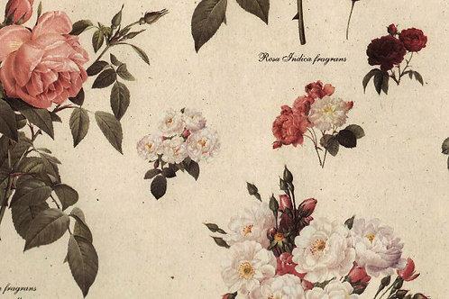 Carta Fiori BiancoGialloRosa 50x70cm (cod. 2072)