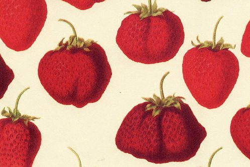 Carta Frutta Rossa 50x70cm (cod.1178)