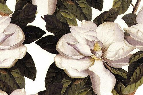 Carta Fiore Bianco 50x70cm (cod. 5046)