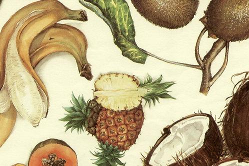 Carta Frutta Cocco e Banane 50x70cm (cod.1304)