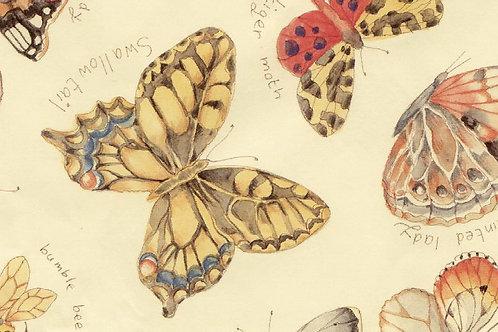 Carta con Farfalle 50x70cm (cod. 1202)