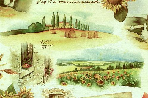 Carta con Campagna 50x70cm (cod. 0129A)