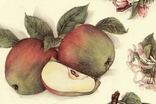 Carta Frutta Mela con Fiori 50x70cm (cod.1303)