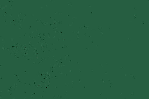 Carta Tinta Unita Verde 50x70cm (cod.1100)