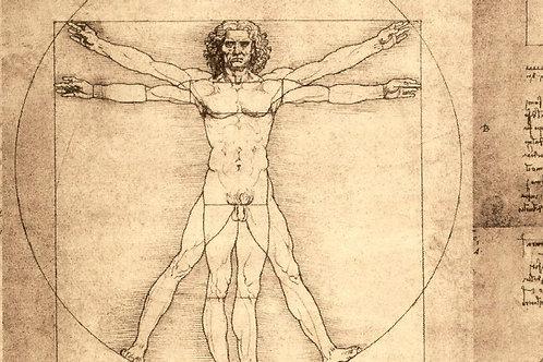Carta con Uomo Vitruviano 50x70cm (cod.1155)
