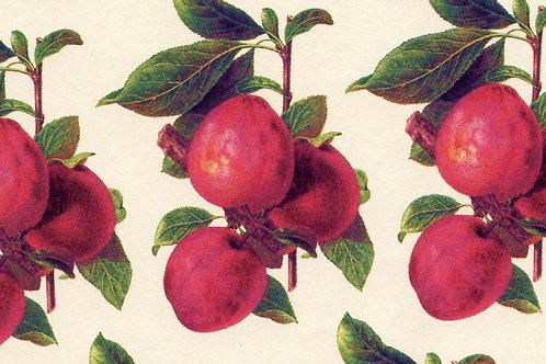 Carta Frutta Rossa con Foglie Verdi 50x70cm (cod.1174)