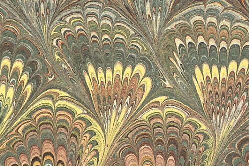 Carta Pavonata 50x70cm (cod.6879)