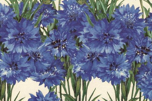 Carta Fiori Blu 50x70cm (cod. 5267)