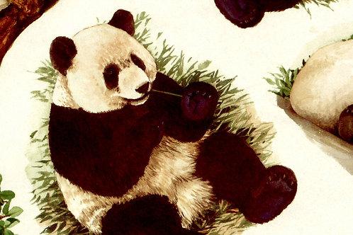 Carta con Panda 50x70cm (cod. 054A)