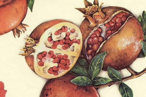 Carta Frutta Melograno 50x70cm (cod.1302)
