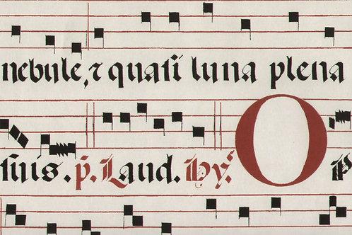 Carta con Note e Scritte 50x70cm (cod.2092)
