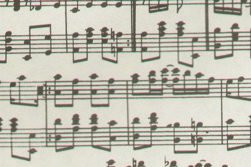 Carta con Note Musicali 50x70cm (cod.5084)