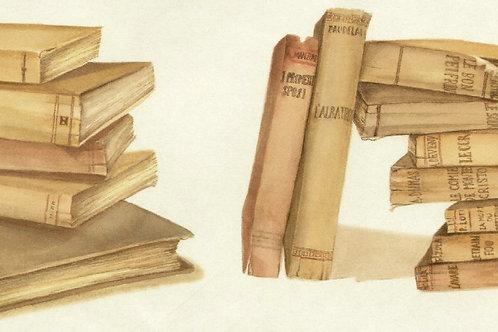 Carta con Libri 50x70cm (cod.1391)