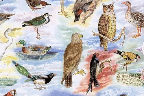 Carta con Uccelli 50x70cm (cod. 1311)