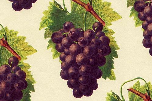 Carta Frutta Uva 50x70cm (cod.1176)