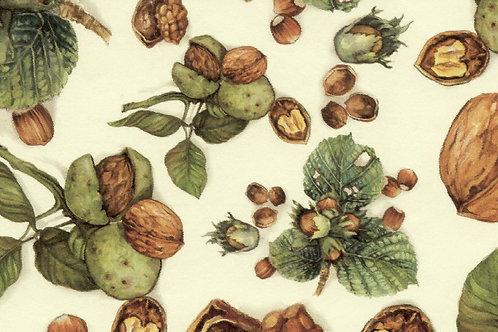 Carta Frutta Noci 50x70cm (cod.1462)