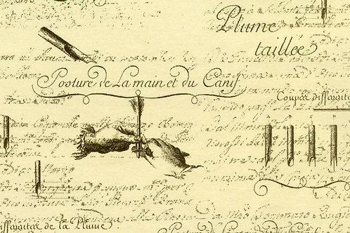 Carta con Scritte 50x70cm (cod.1479)