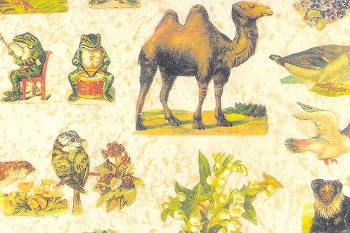 Carta con Animali Vari 50x70cm (cod. 5193)
