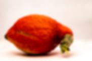 hubbard orange.png