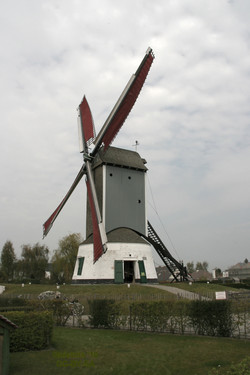 Windmühle Oostmolen
