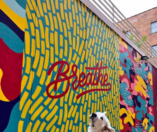 clemens at breathe mural.jpg