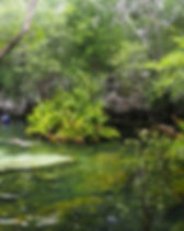 cenote-azul-yucatan-32.jpg