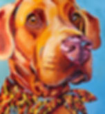 Chesapeake_BAY_RETRIEVER_Kim_H_COMMISSIO