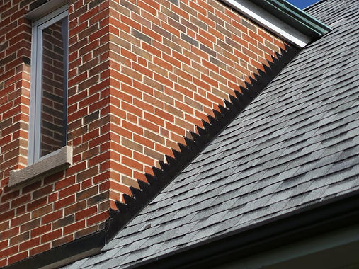 holman_nachtwey_4-after-1-shingle-roofin