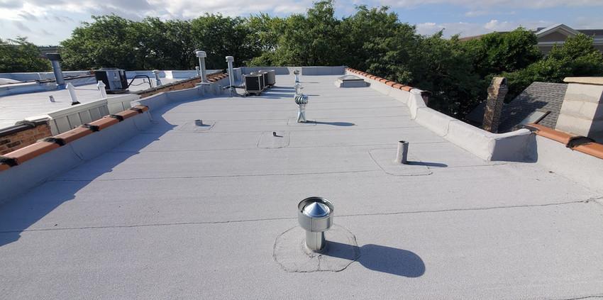 holman-and-nachtwey-flat-roof2021.jpg