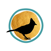 Stellar & Sage Logo_no text-01.png