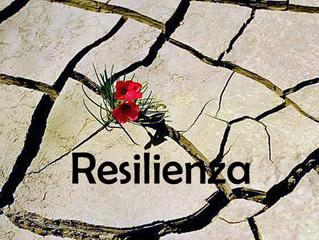 Resilienza: la forza della vita