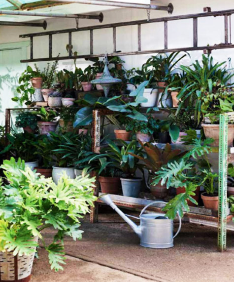 How To Build A Greenhouse In Low Budget